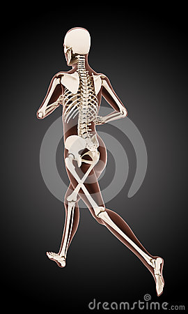 Running female medical skeleton
