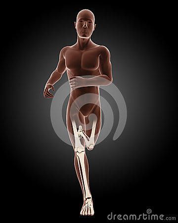Running male medical skeleton