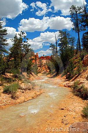 Free Running River Stock Photo - 7904620