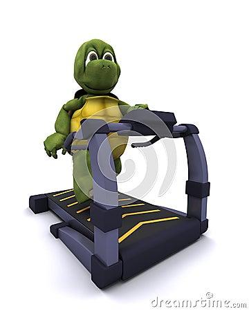 Running sköldpaddatreadmill