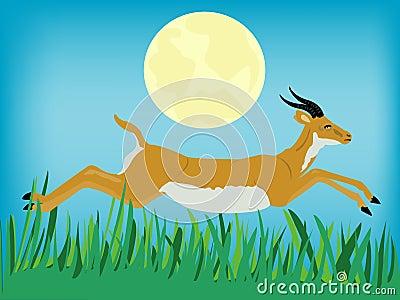 Runninging antelope