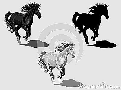 Runnning horses, monochrome