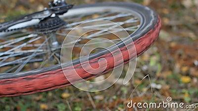 Ruota in bicicletta archivi video
