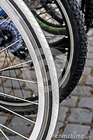 Ruota di bicicletta. Dettaglio 22