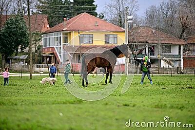 In rural areas, children who love animals