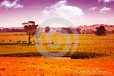 Australia countryside