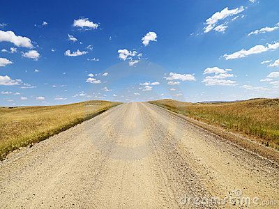 Rural Dirt Road Through Grassland