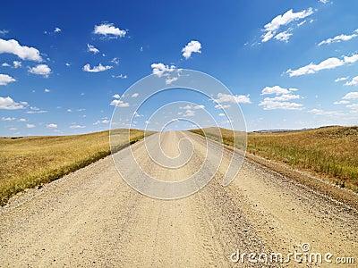 Rural Dirt Road Through Grassland