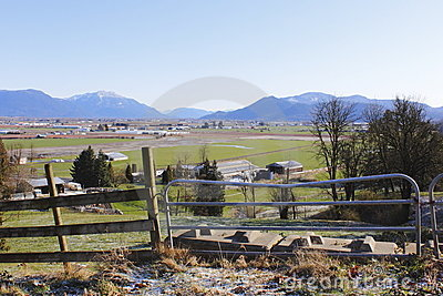 Rural Farmland in the Fraser Valley