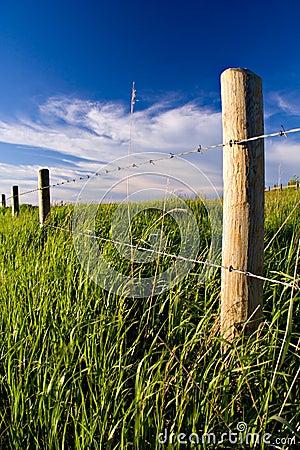 Free Rural Fenceline Stock Image - 415321