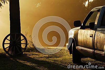 Rural foggy morning