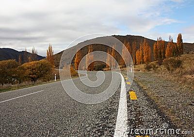 Rural highway of New zEaland