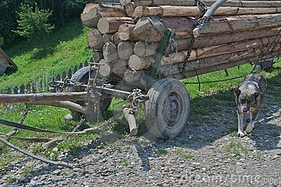 Rural horse cart