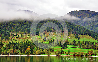 Rural landscape. Bohinj lake, Slovenia Editorial Photo