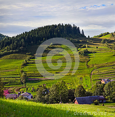 Rural landscape with lush green fields and farm house