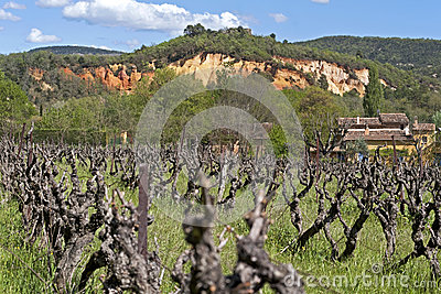 Rural landscape with vineyard and ochre quarries,