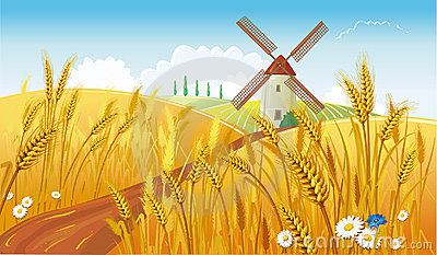 Rural landscape with windmill