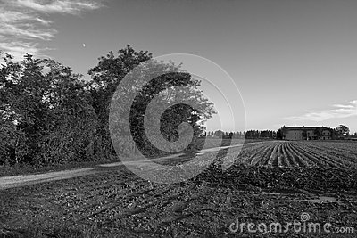 Rural Life Royalty Free Stock Photography - Image: 26777047