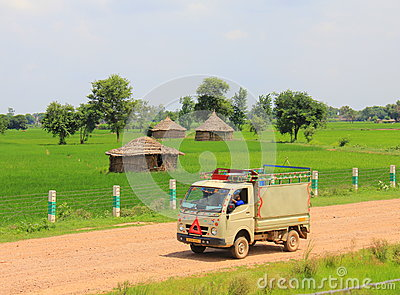 Rural life in India: wheat fields and small truck Editorial Image
