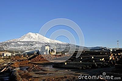 Rural lumber mill