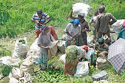 Rural market in Rwanda Editorial Photography