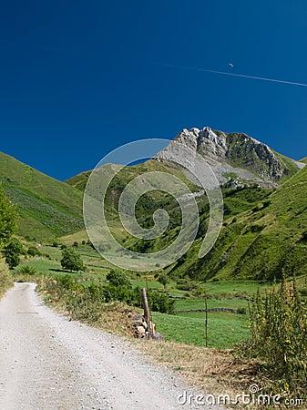 Rural Mountain Lane with Moon