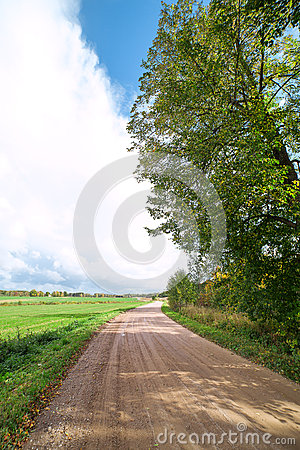 Rural road in summertime.