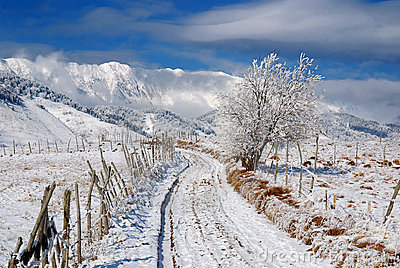 Rural road in winter time