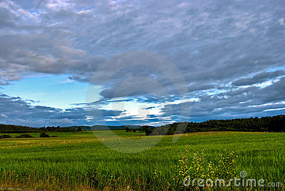 Rural scandinavia