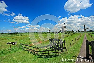 Rural scene from Kinderdijk