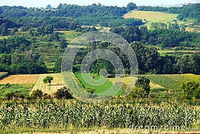 Rural Serbia