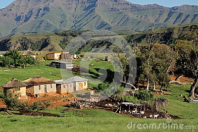 Rural settlement and livestock