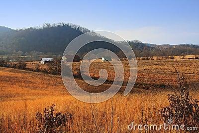 Rural Tennessee Farm