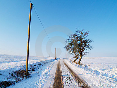 Rural winter road