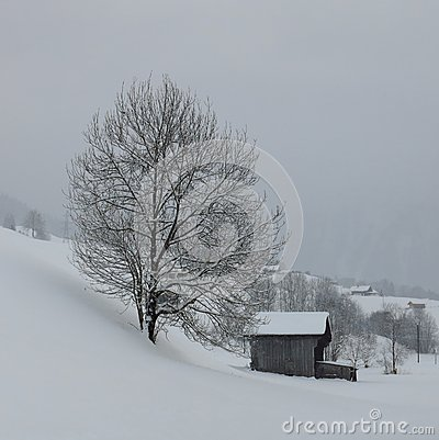 Free Rural Winter Scene In The Swiss Alps Royalty Free Stock Photos - 48789628