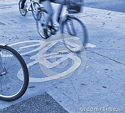 Rush hour cyclists