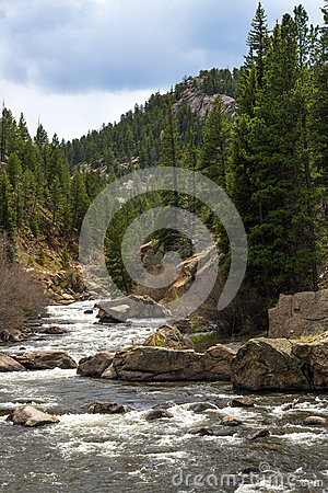 Free Rushing Stream River Water Through Eleven Mile Canyon Colorado Stock Photography - 91678142