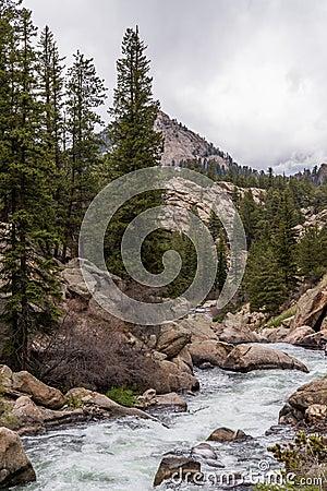 Free Rushing Stream River Water Through Eleven Mile Canyon Colorado Stock Photos - 96092193