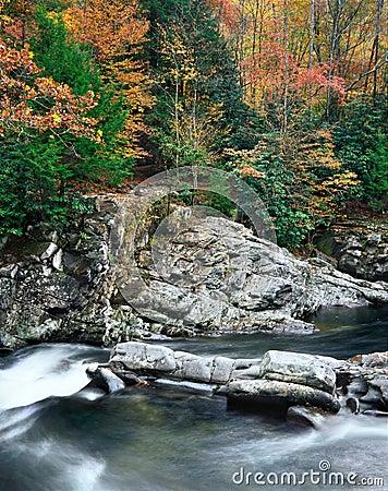 Rushing Water, Great Smoky Mountains