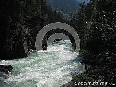 Rushing waters of Jasper Park