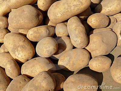 Russet potatoes at market