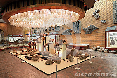 Paleontological Museum Editorial Photo