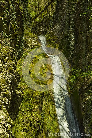 Free Russia. Sochi. Mountain River And Waterfall Royalty Free Stock Photos - 116622668