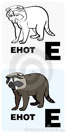 Russian alphabet and Raccoon