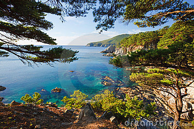 Russian primorye seashore