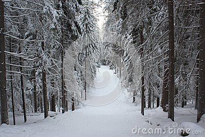 Russian winter 4
