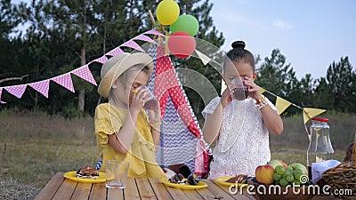 Rust op een picknick, knappe vriendinnen hebben plezier met het drinken van sap tijdens de maaltijd in het bos op vakantie door h stock videobeelden
