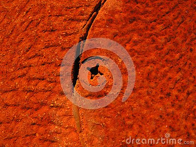 Rust Texture and Screw Head