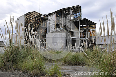 Rusted and Old Factory with Vegetation