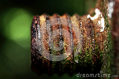 The rusted old iron nut which can t be turned off
